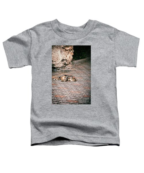 Toddler T-Shirt featuring the photograph Lazy Cat    by Silvia Ganora