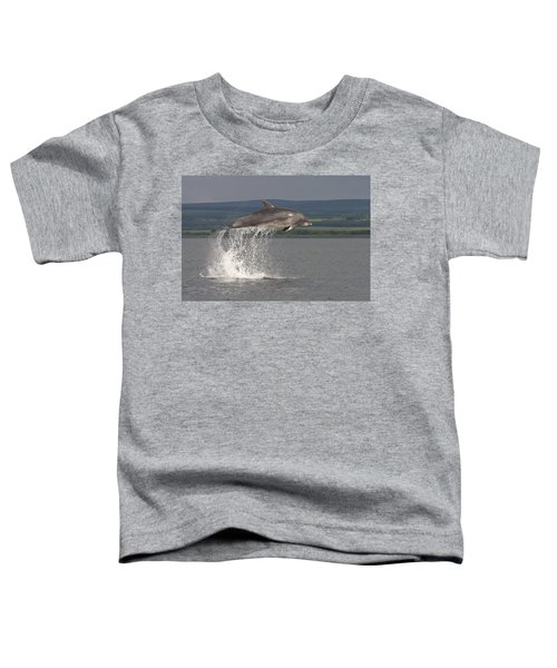 Leaping Bottlenose Dolphin  - Scotland #39 Toddler T-Shirt