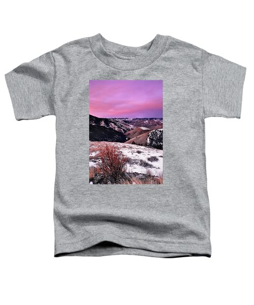 Lemhi Pass Toddler T-Shirt