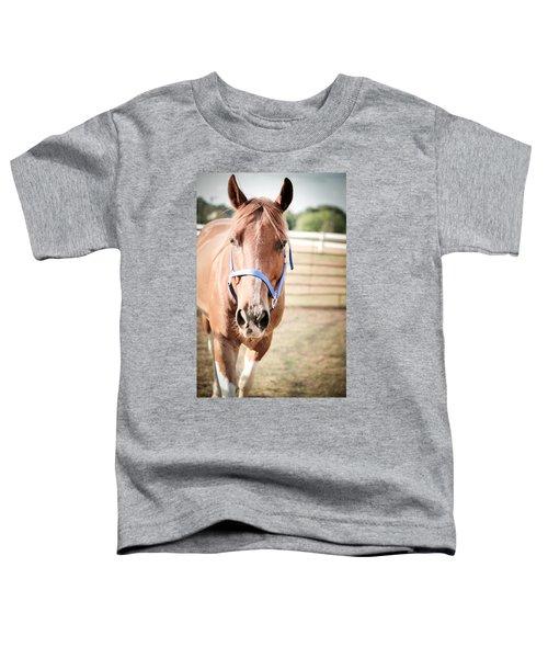 Light Brown Horse Named Flash Toddler T-Shirt