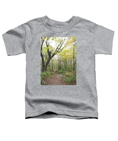 Light On Path Toddler T-Shirt