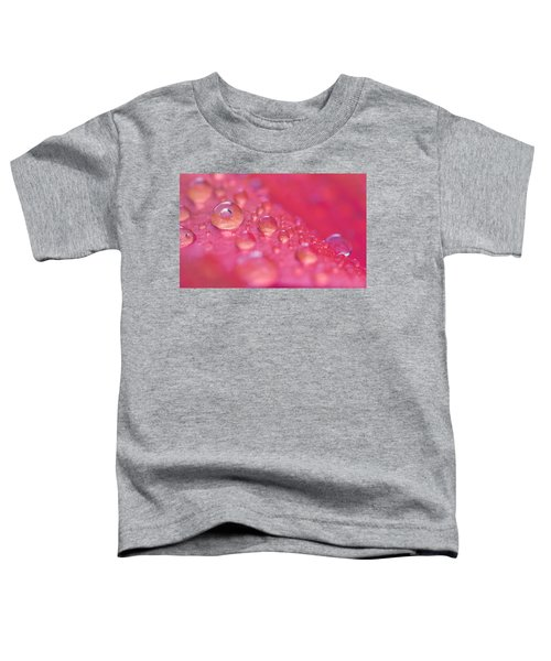 ...like A Dream Toddler T-Shirt