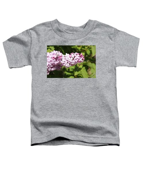 Lilacs 5550 Toddler T-Shirt