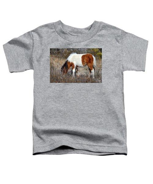 Linda Rae's Autumn Glory N2bhs-ap Toddler T-Shirt