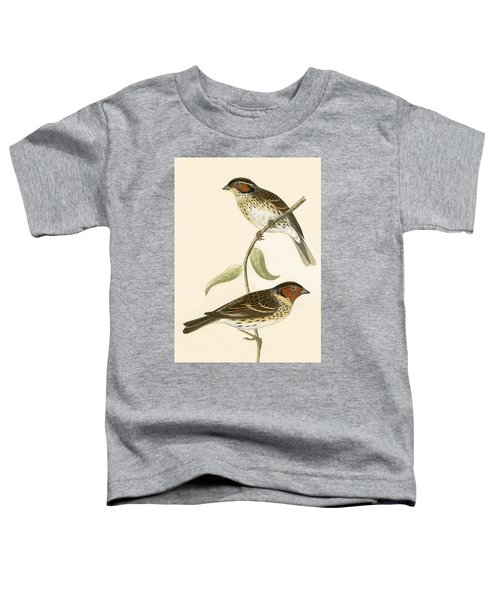 Little Bunting Toddler T-Shirt by English School