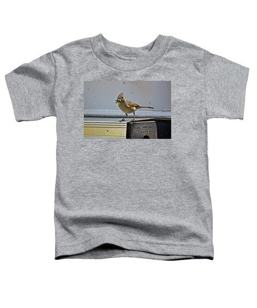 Little Mother Toddler T-Shirt