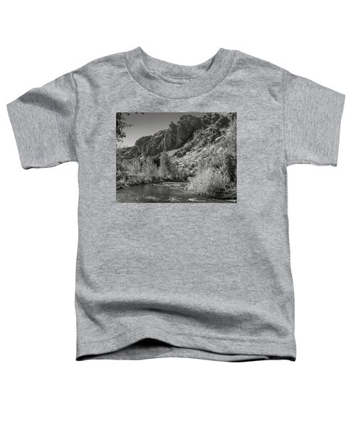 Little Wood River 2 Toddler T-Shirt