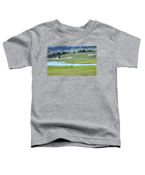 Lone Bison Out On The Prairie Toddler T-Shirt