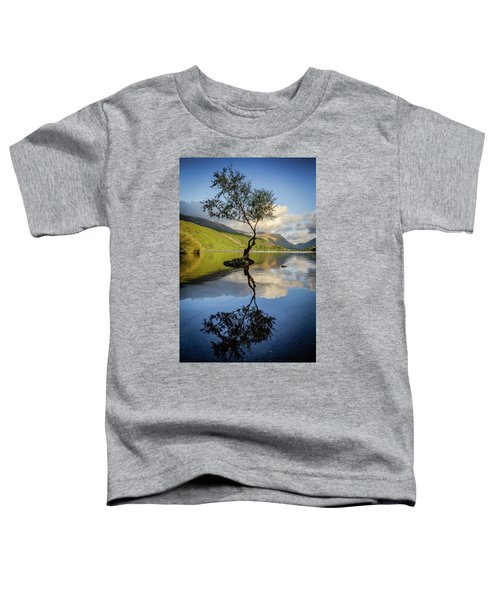 Lone Tree, Llyn Padarn Toddler T-Shirt