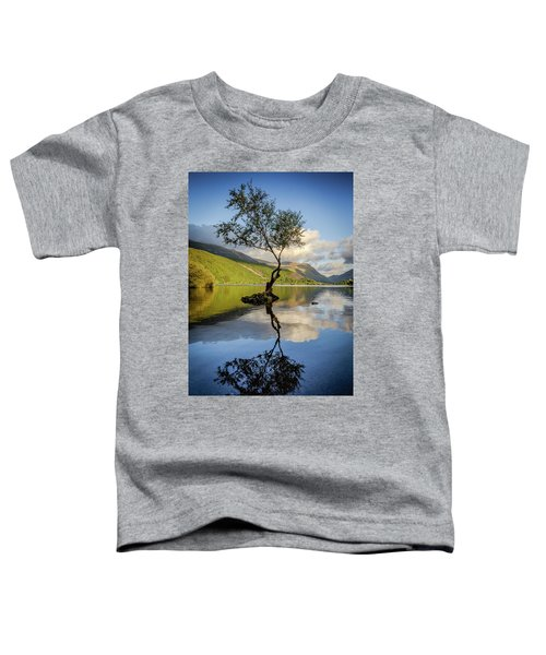 Lone Tree, Llyn Padarn Toddler T-Shirt