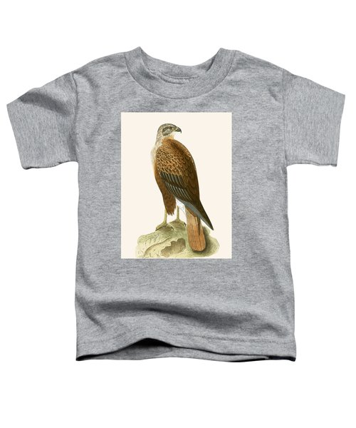 Long Legged Buzzard Toddler T-Shirt by English School