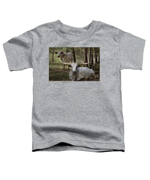 Longhorns On The Watch Toddler T-Shirt