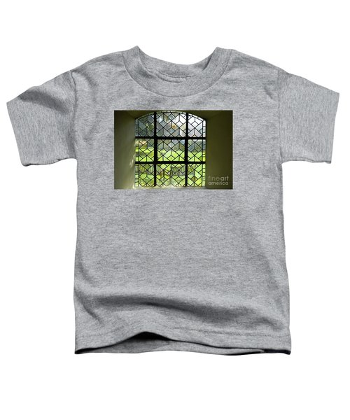 Looked Through The Window Toddler T-Shirt