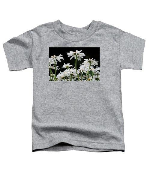 Looking Up At At Daisies Toddler T-Shirt