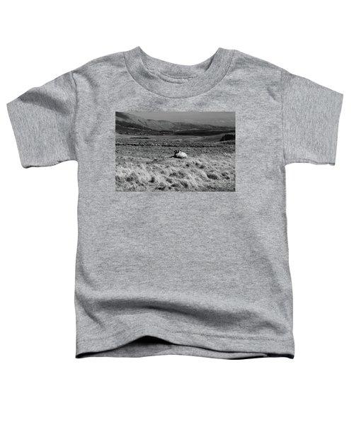 Maam Valley Toddler T-Shirt