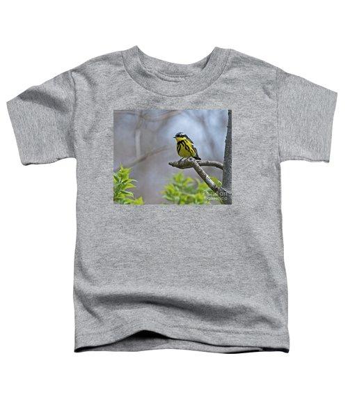 Maggie... Toddler T-Shirt