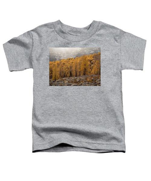 Magnificent Fall Toddler T-Shirt