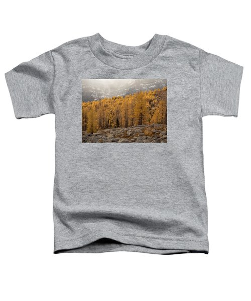 Magnificent Fall Toddler T-Shirt
