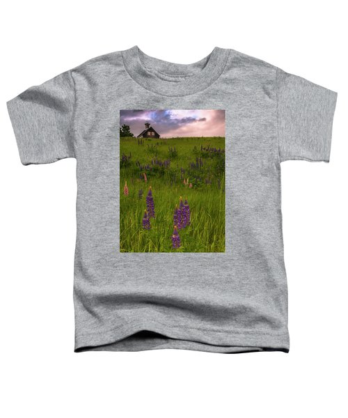 Maine Lupines And Home After Rain And Storm Toddler T-Shirt