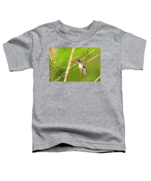 Malachite Kingfisher Toddler T-Shirt