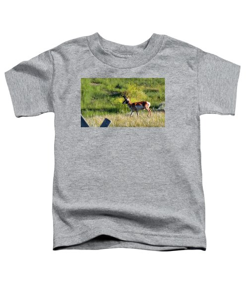 Male Pronghorn Toddler T-Shirt