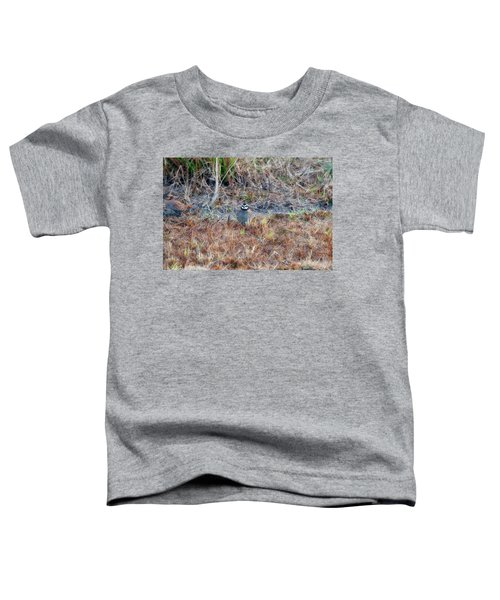 Male Quail In Field Toddler T-Shirt