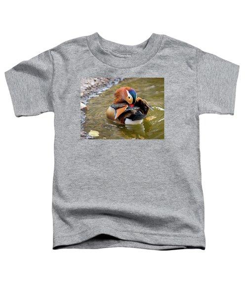 Mandarin Duck Preening Feathers Toddler T-Shirt