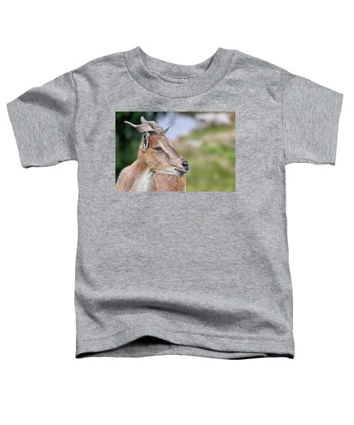 Markhor Toddler T-Shirt