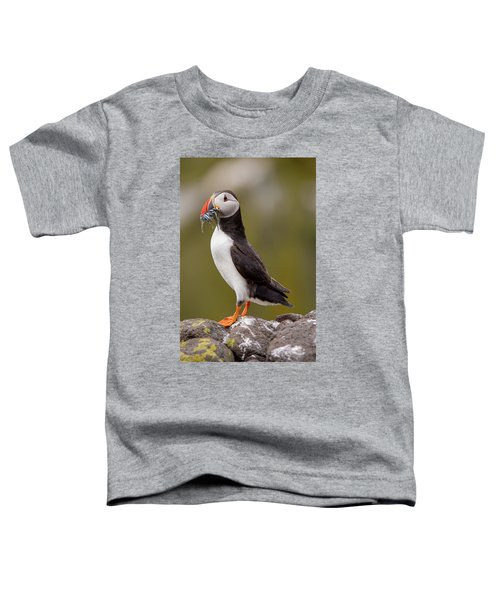May Puffin Toddler T-Shirt