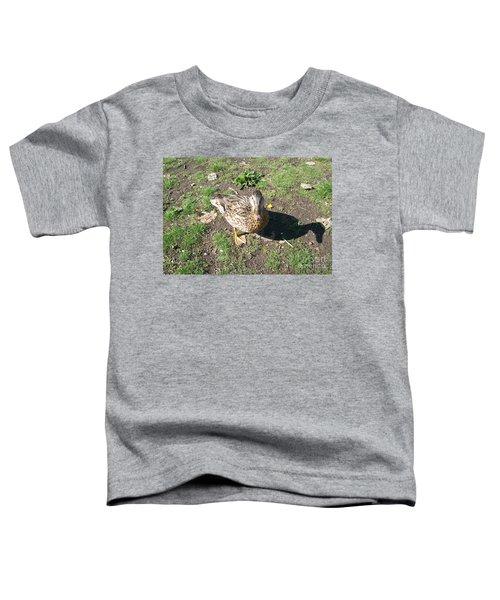 Melanie Tweed Visit At Boundary Bay Toddler T-Shirt