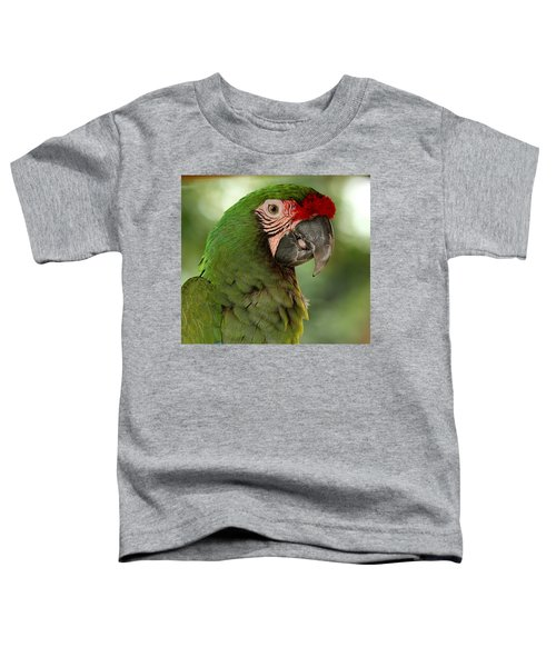 Military Macaw Toddler T-Shirt