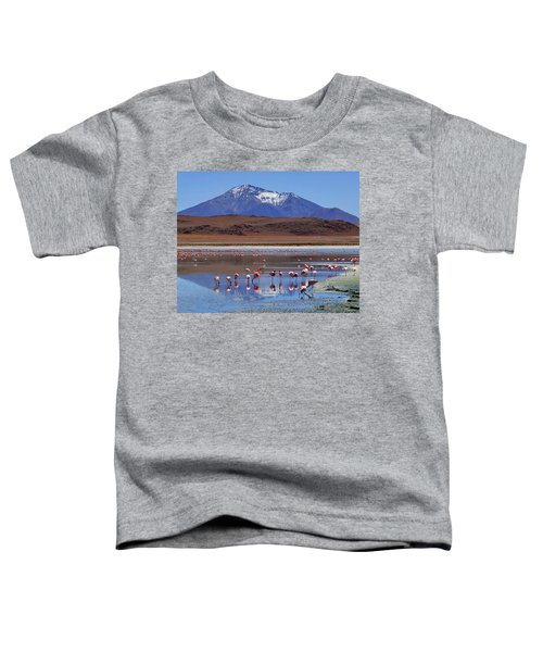 Mirage Toddler T-Shirt