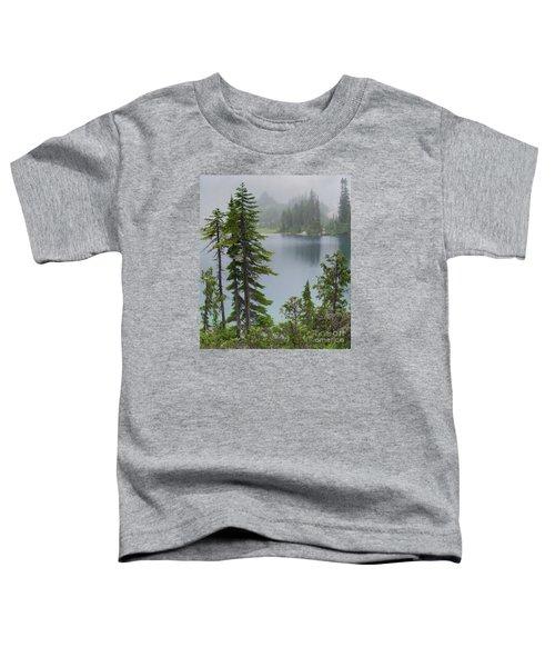 Mist At Snow Lake Toddler T-Shirt