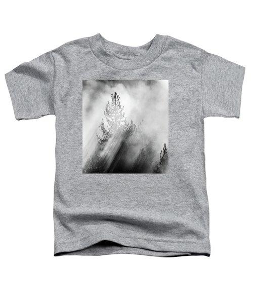 Mist Shadows Toddler T-Shirt
