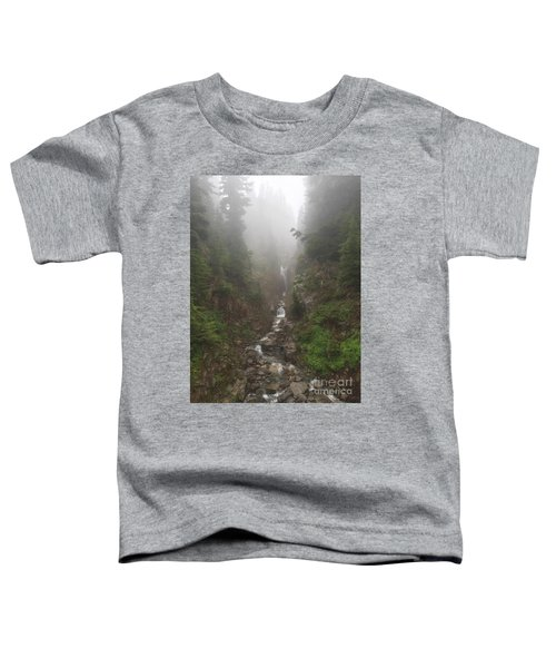 Misted Waterfall Toddler T-Shirt