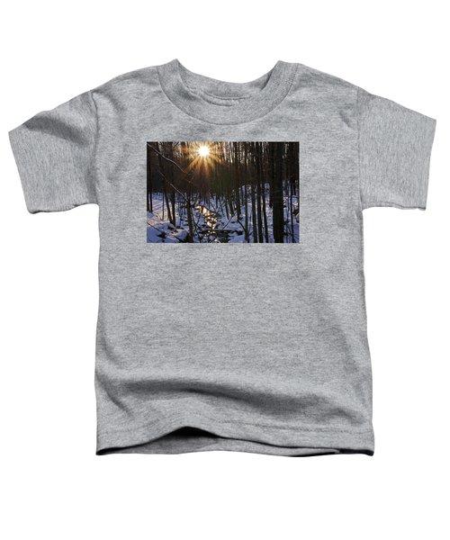 Misty Morning Toddler T-Shirt
