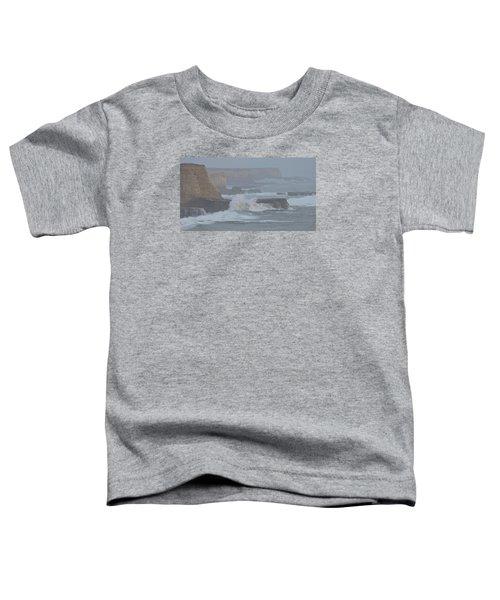 Misty Pacific Cliffs Toddler T-Shirt