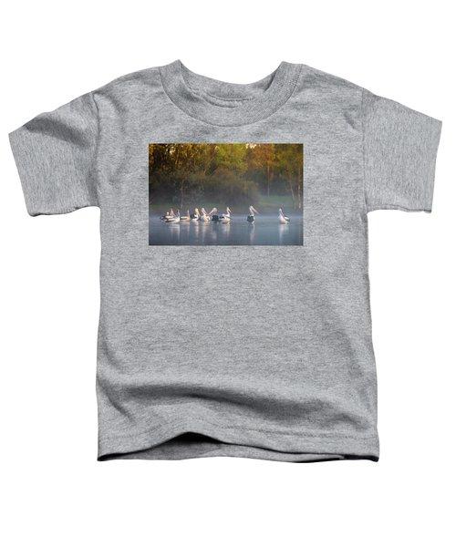 Misty Sunrise Toddler T-Shirt
