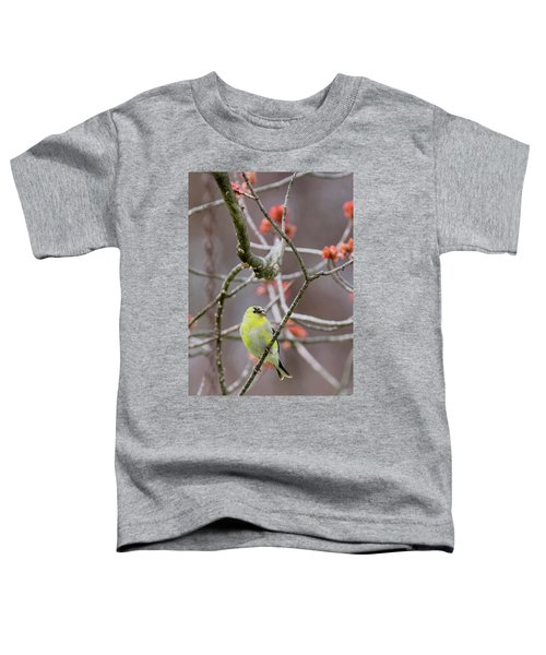 Toddler T-Shirt featuring the photograph Molting Gold Finch by Bill Wakeley
