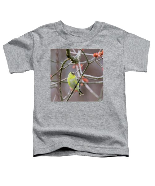 Toddler T-Shirt featuring the photograph Molting Gold Finch Square by Bill Wakeley
