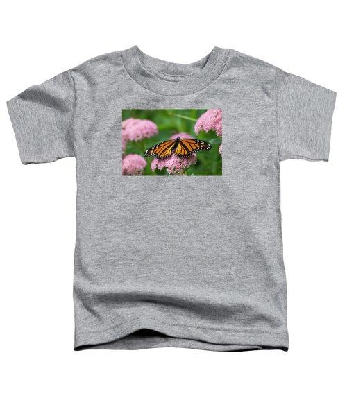 Monarch On Sedum Toddler T-Shirt