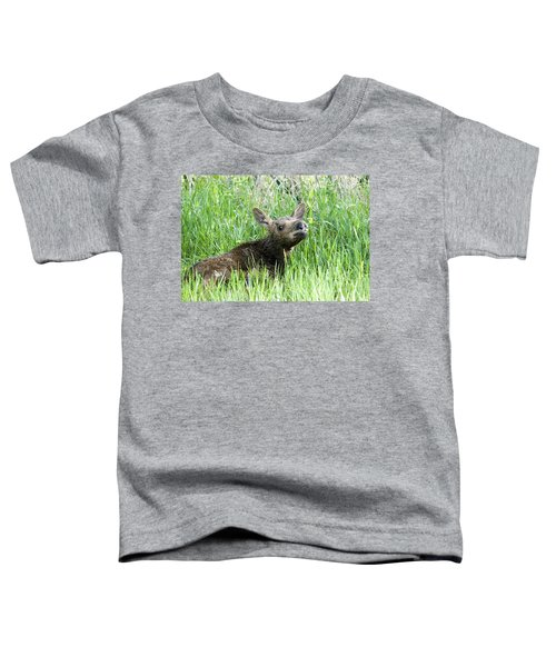 Moose Baby Toddler T-Shirt