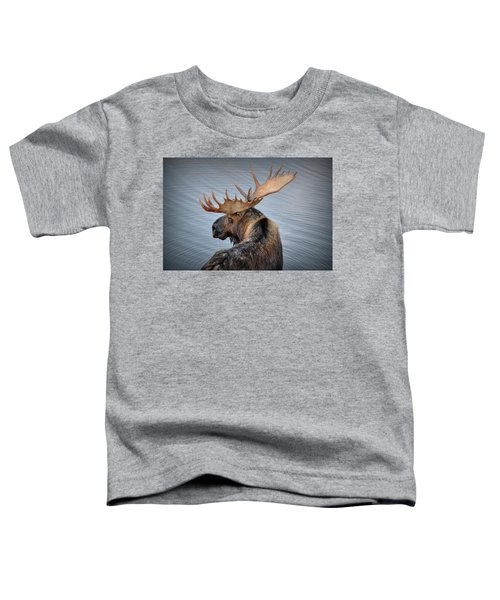 Moose Drool Toddler T-Shirt