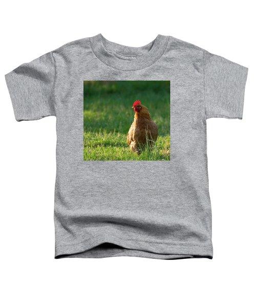 Morning Chicken Toddler T-Shirt