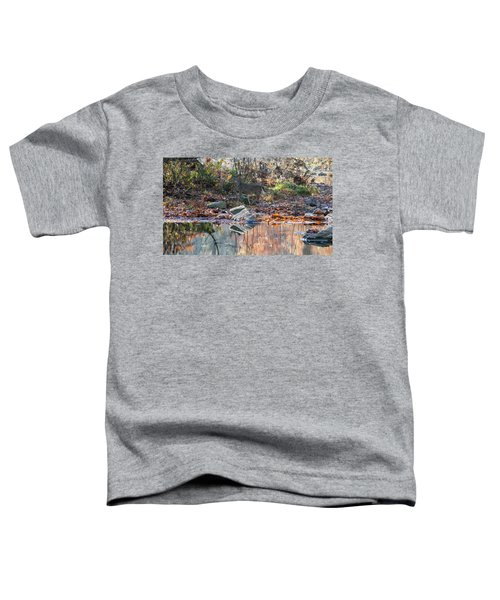Morning In The Woods Toddler T-Shirt