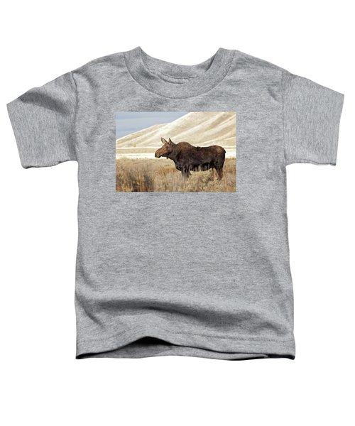 Morning Moose Toddler T-Shirt