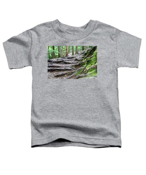 Moss Glen Falls - Vermont Toddler T-Shirt