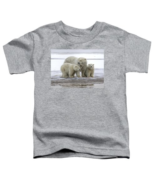 Mother And Cubs In The Arctic Toddler T-Shirt
