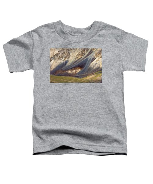 Mountain Abstract 2 Toddler T-Shirt
