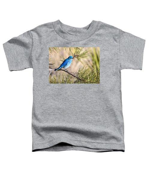 Mountain Bluebird In A Pine Toddler T-Shirt